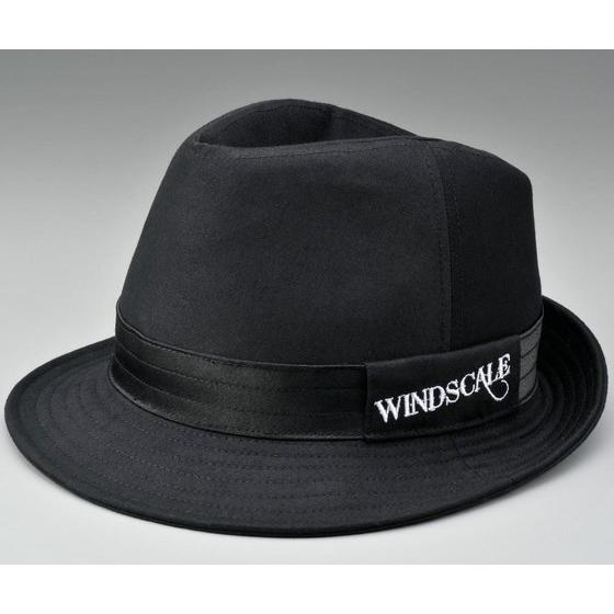 WIND SCALE Hat