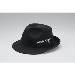 WIND SCALE Hat Felt for adult [Jul 2014 Delivery]