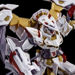 RG 1/144 GUNDAM ASTRAY GOLD FRAME AMATSU HANA [Jun 2020 Delivery]