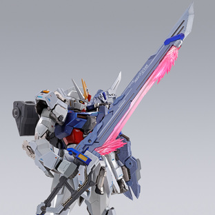 METAL BUILD SWORD STRIKER