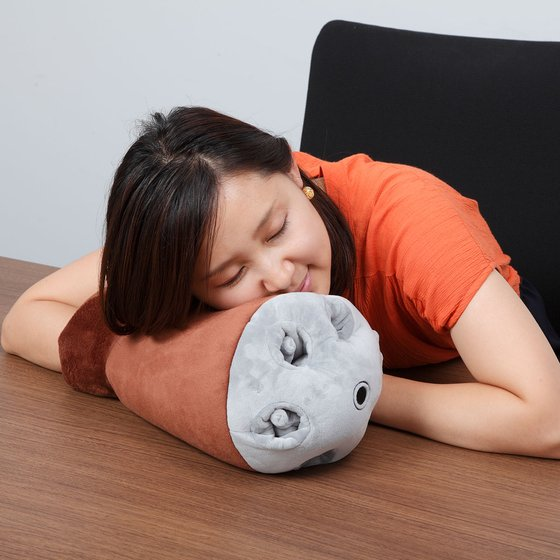 ARM CUSHION ACGUY [April 2018 Delivery]