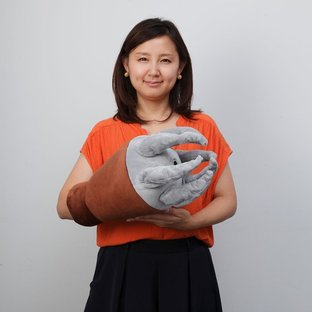 ARM CUSHION ACGUY [March 2017 Delivery]