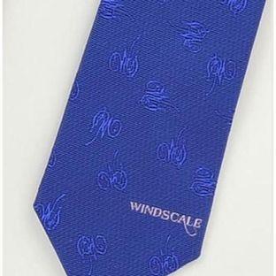 Kamen Rider W Blue Necktie