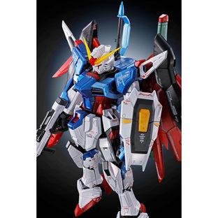 RG1/144 DESTINY GUNDAM[TITANIUM FINISH] [Aug 2021 Delivery]