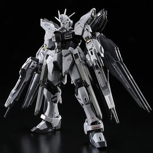 RG 1/144 STRIKE FREEDOM GUNDAM DEACTIVE MODE